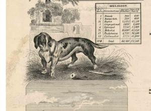 ChenangoCo_1855_clip_Dog_StAndrews