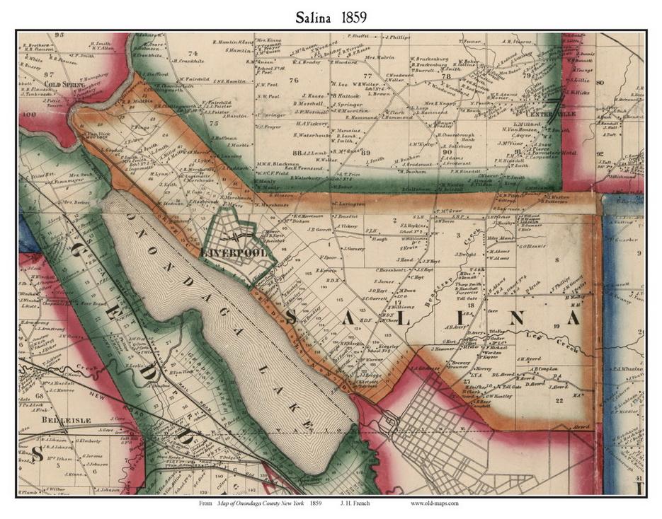Salina_1859_web